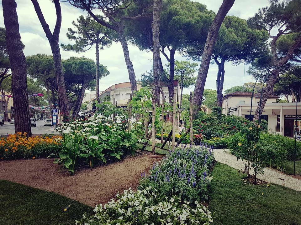 Cervia mare ed emozioni tutto l 39 anno for Giardini fioriti tutto l anno